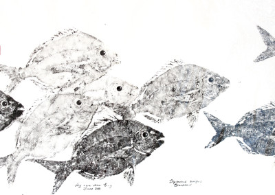 Liz van der Berg - Blacktail Shoal 1 - 450x700 Japanese Fish Print R3940
