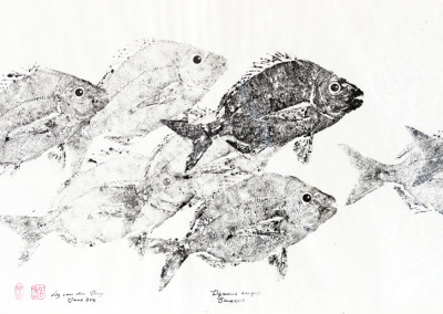 Liz van der Berg - Blacktail Shoal 2 - 450x700 Japanese Fish Print R3940