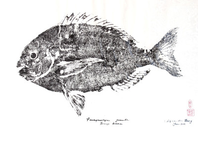 Liz van der Berg - Bream - 450x665 Japanese Fish Print R1890