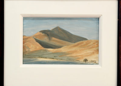 niel-jonker-sossusvlei-510x630-oil-on-board-r5400