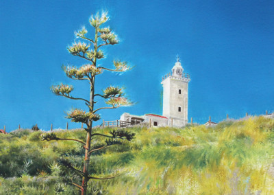 Cara Steyn - Another Indigenous Hill - 570x390 Oil on Canvas R6300