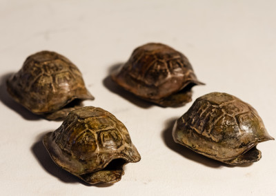 Sarel Petrus, Small Tortoises, Bronze, R1260 each