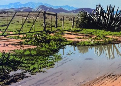 Agave Reflexion, 700 x 350mm, reduction linocut, unframed,