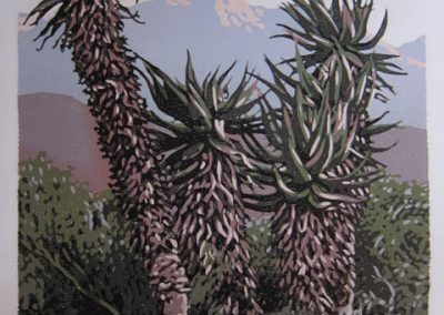 Swartberg Aloes - 565 x 420mm, unframed, Reduction Woodblock, R8700