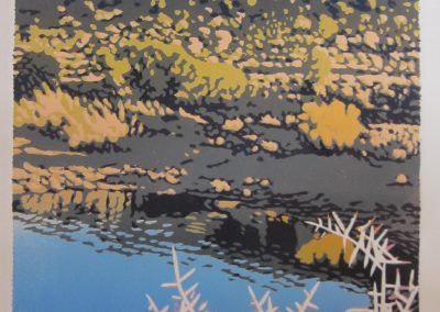 JYellow Bush Reflection, 565 x 420mm, unframed, Reduction Woodblock, R8700
