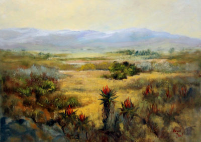 helen-pfeil-the-plains-of-the-camdeboo